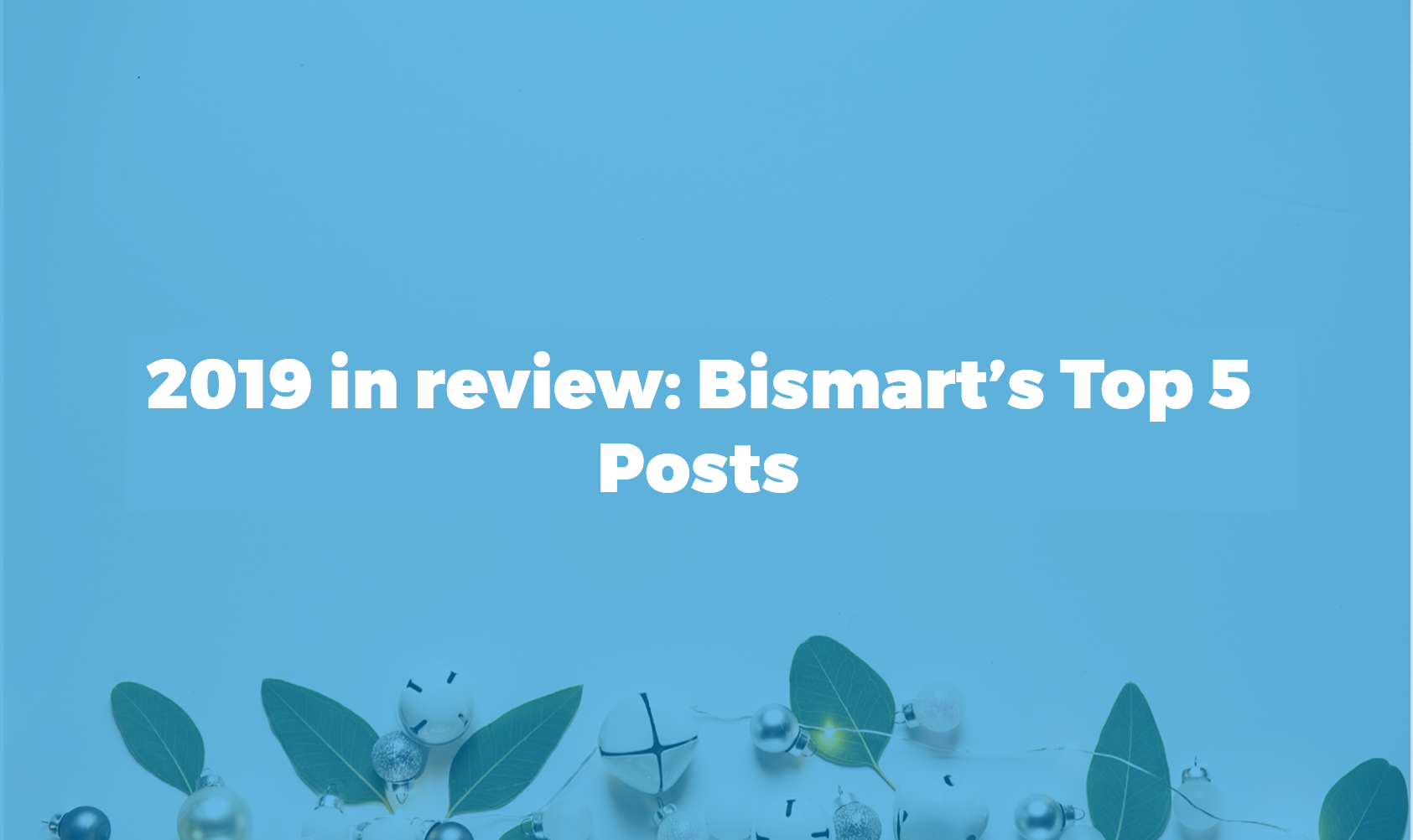 2019 blog bismart review