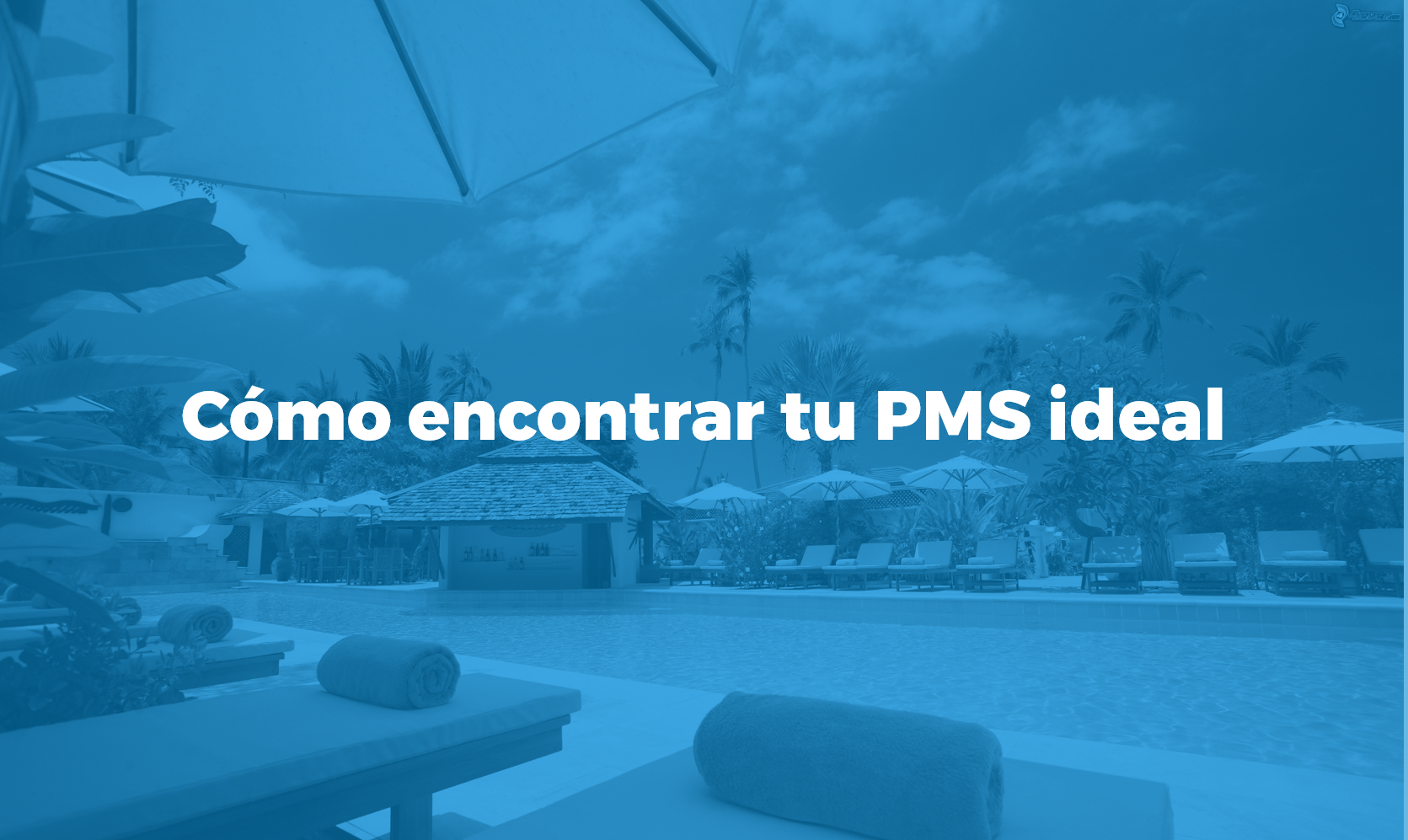 Cómo encontrar tu pms ideal Bismart