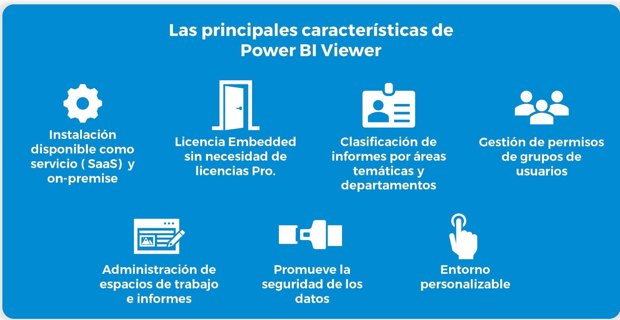 principales características de Power BI Viewer-1